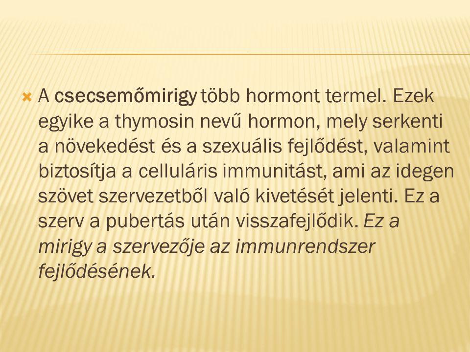 A csecsemőmirigy több hormont termel