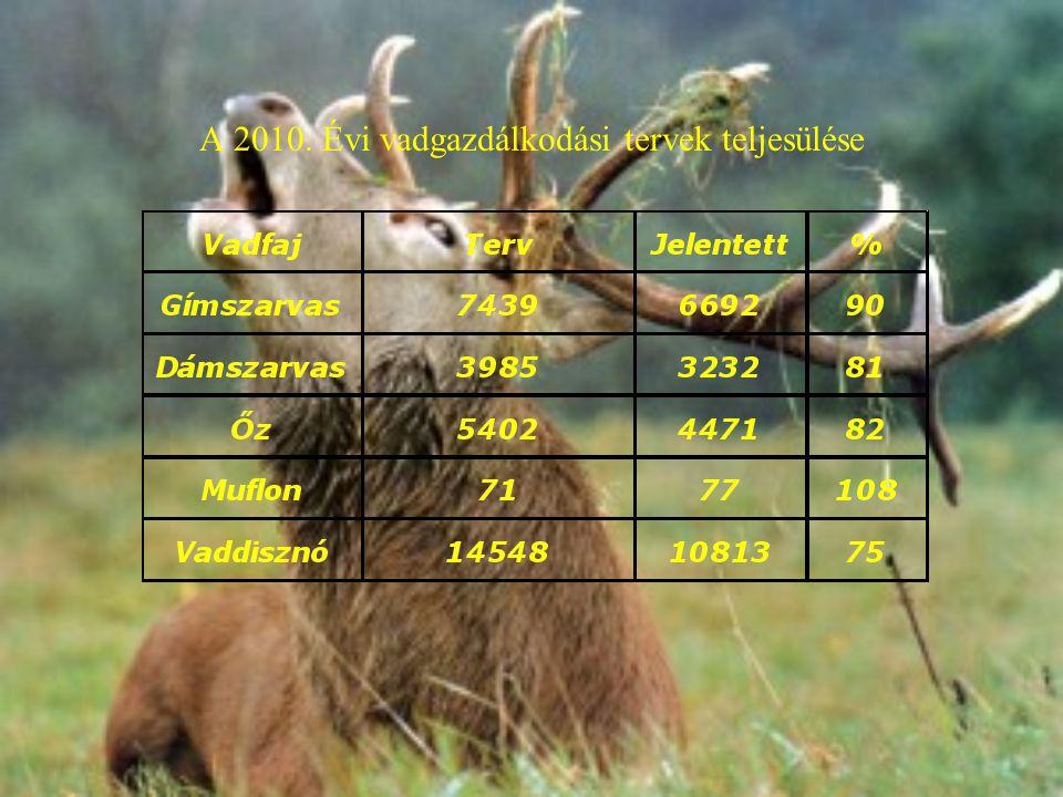 A 2010. Évi vadgazdálkodási tervek teljesülése