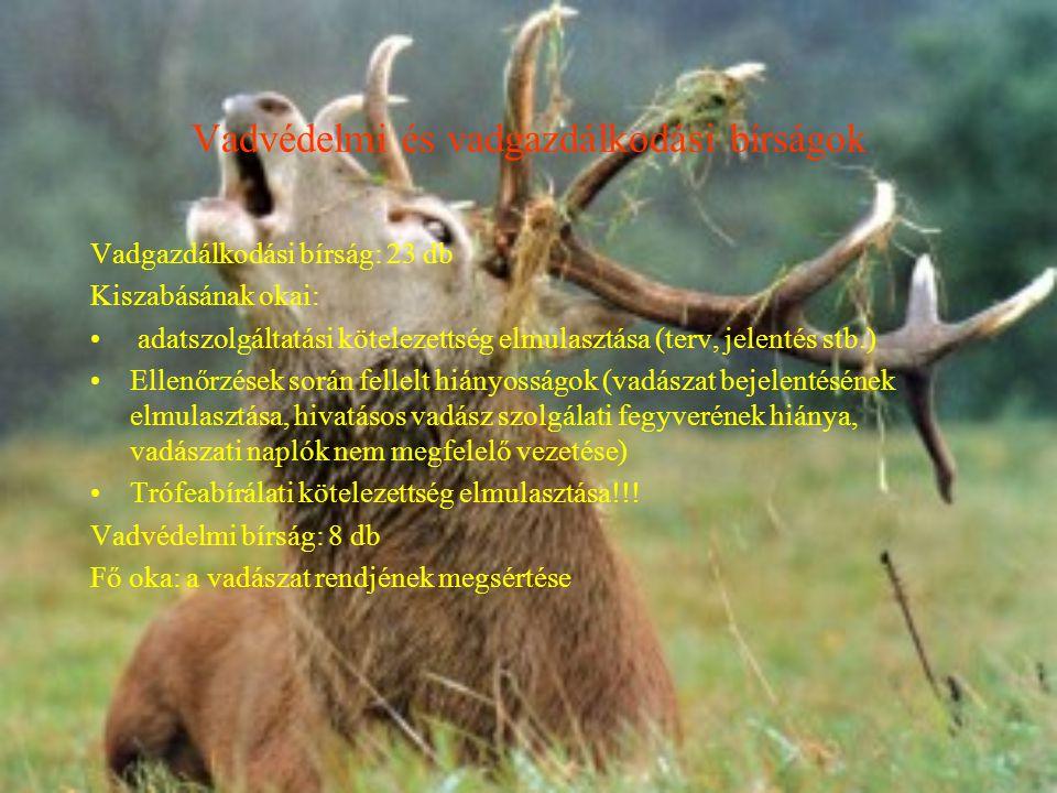 Vadvédelmi és vadgazdálkodási bírságok
