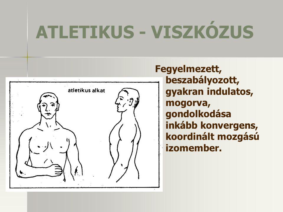 ATLETIKUS - VISZKÓZUS Fegyelmezett, beszabályozott, gyakran indulatos, mogorva, gondolkodása inkább konvergens, koordinált mozgású izomember.