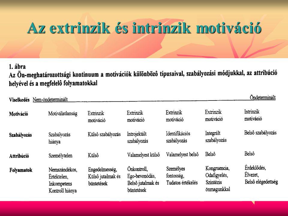 Az extrinzik és intrinzik motiváció