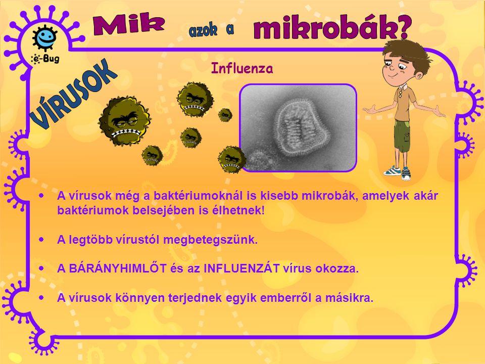 Mik mikrobák azok a Influenza VÍRUSOK