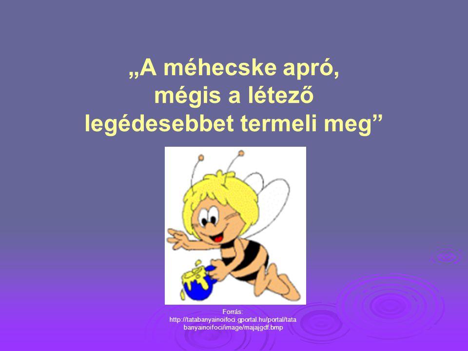 """""""A méhecske apró, mégis a létező legédesebbet termeli meg"""
