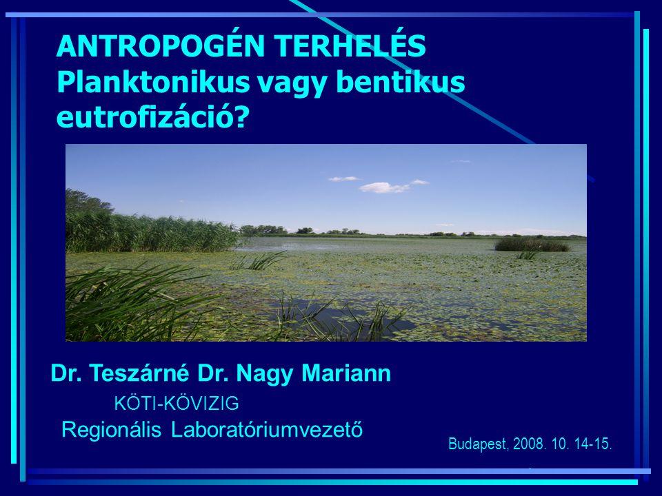 ANTROPOGÉN TERHELÉS Planktonikus vagy bentikus eutrofizáció