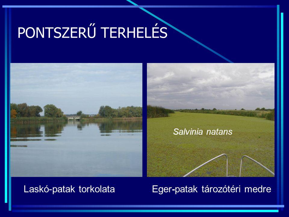 PONTSZERŰ TERHELÉS Laskó-patak torkolata Eger-patak tározótéri medre