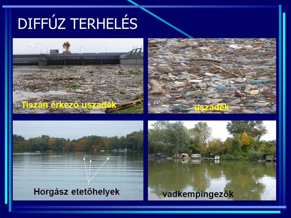 DIFFÚZ TERHELÉS Tiszán érkező uszadék uszadék Horgász etetőhelyek