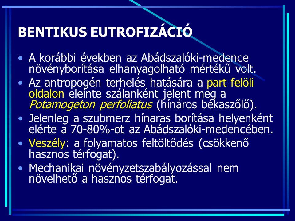 BENTIKUS EUTROFIZÁCIÓ