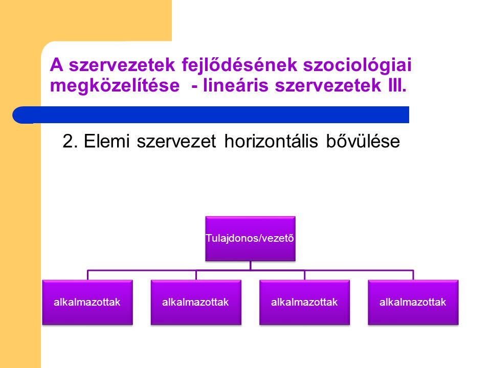 2. Elemi szervezet horizontális bővülése