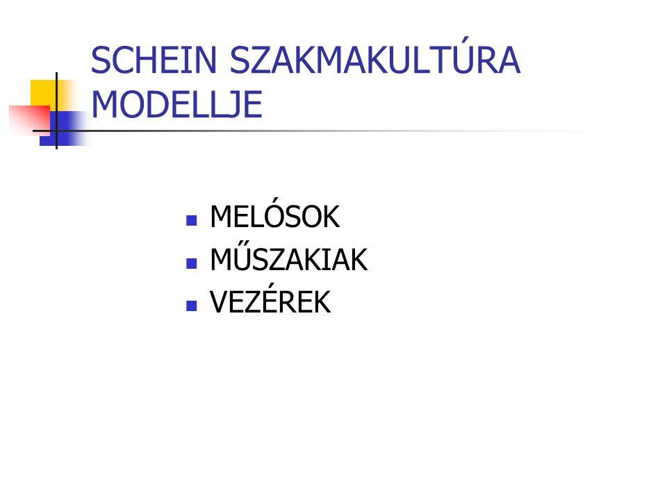 SCHEIN SZAKMAKULTÚRA MODELLJE