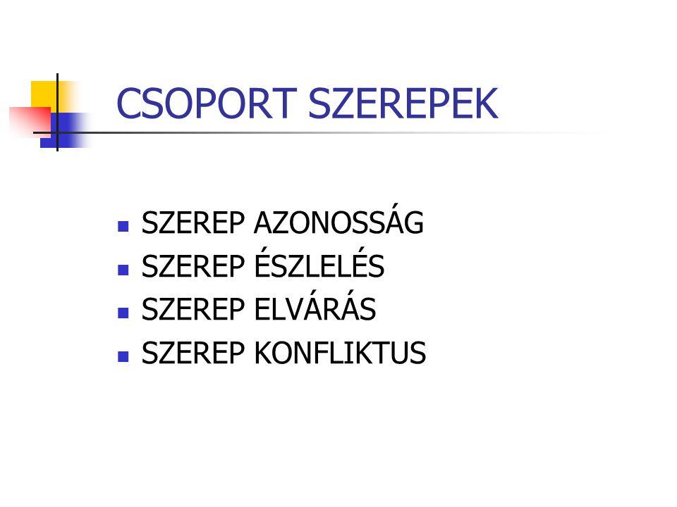 CSOPORT SZEREPEK SZEREP AZONOSSÁG SZEREP ÉSZLELÉS SZEREP ELVÁRÁS