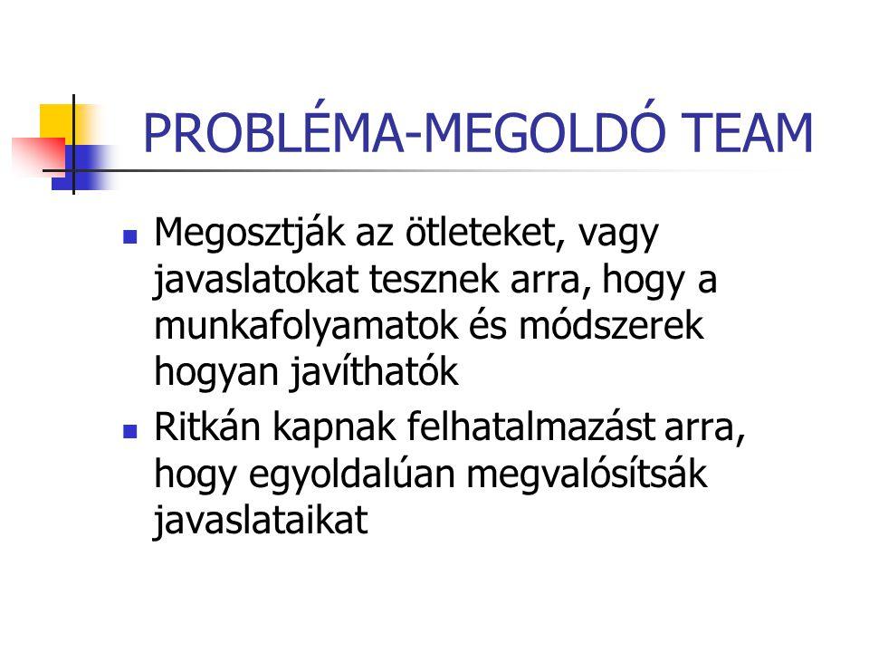 PROBLÉMA-MEGOLDÓ TEAM