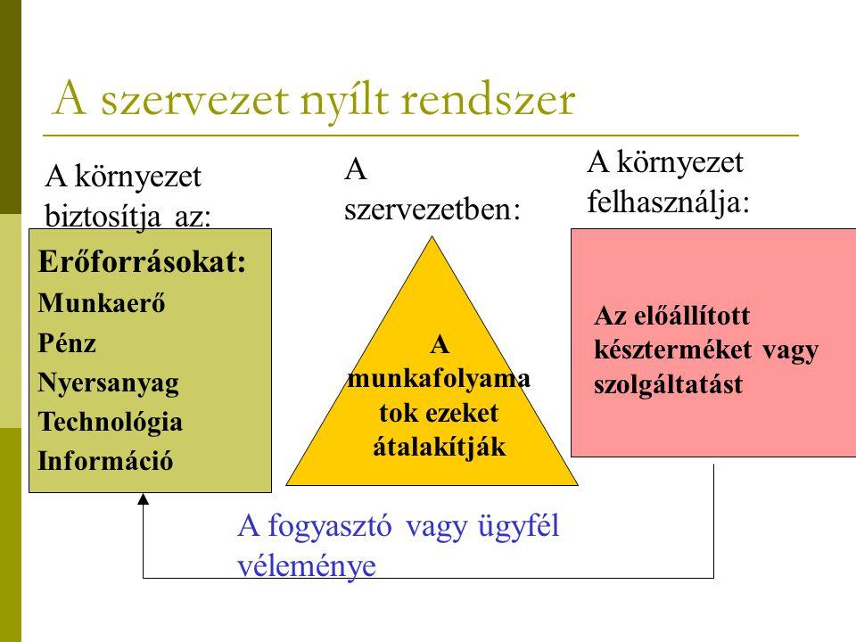 A szervezet nyílt rendszer