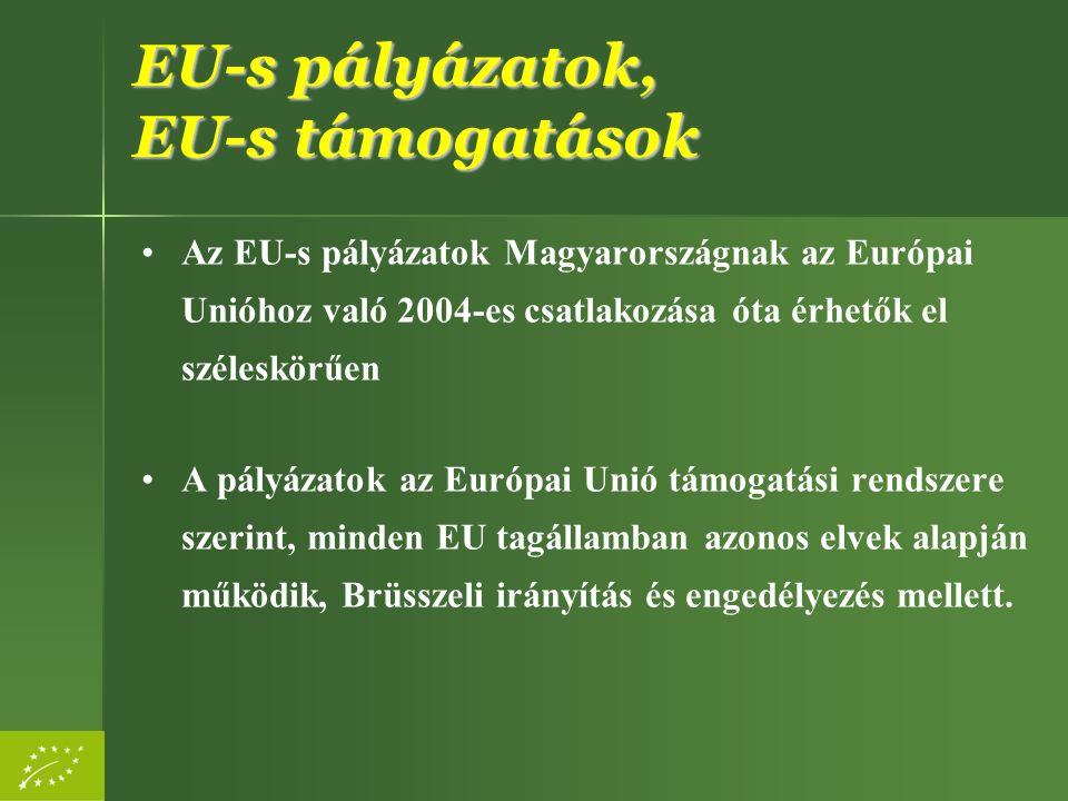 EU-s pályázatok, EU-s támogatások
