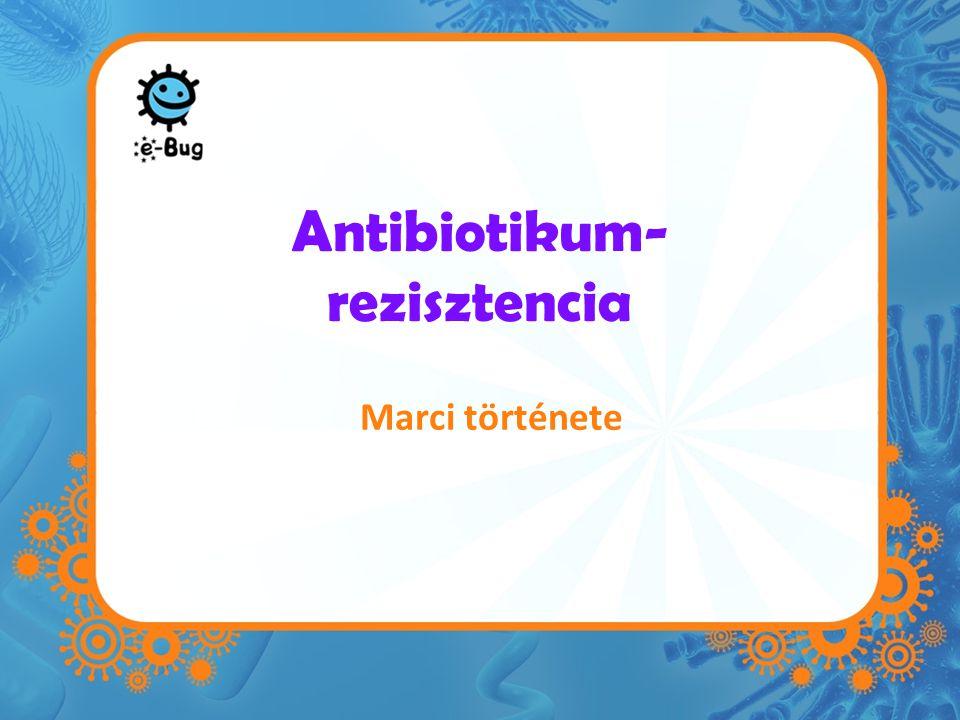 Antibiotikum- rezisztencia