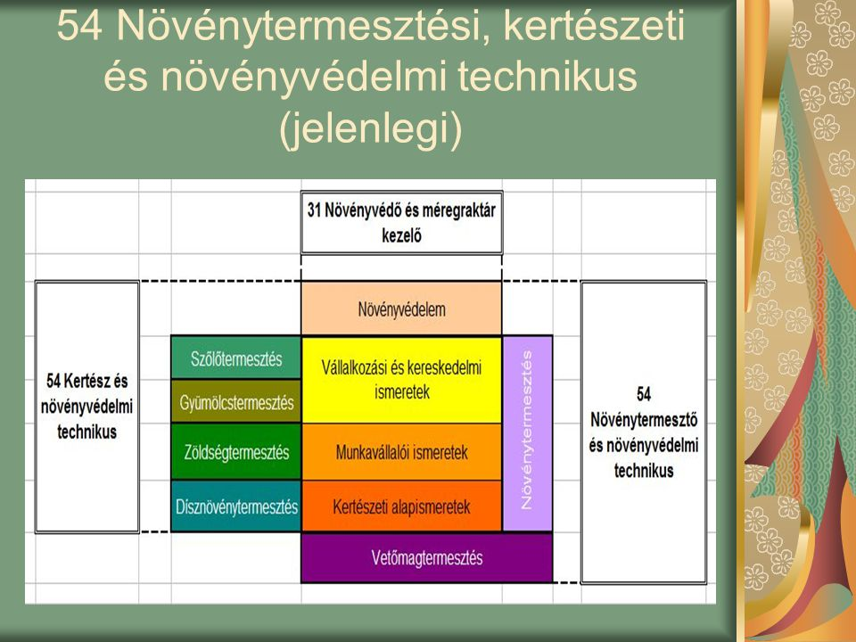 54 Növénytermesztési, kertészeti és növényvédelmi technikus (jelenlegi)