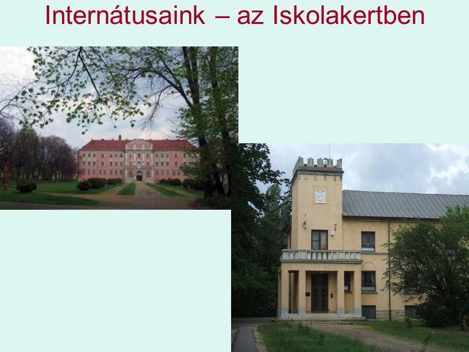 Internátusaink – az Iskolakertben