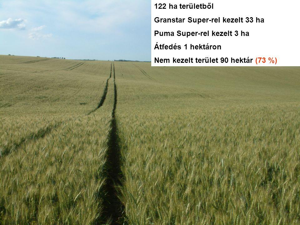 122 ha területből Granstar Super-rel kezelt 33 ha. Puma Super-rel kezelt 3 ha. Átfedés 1 hektáron.