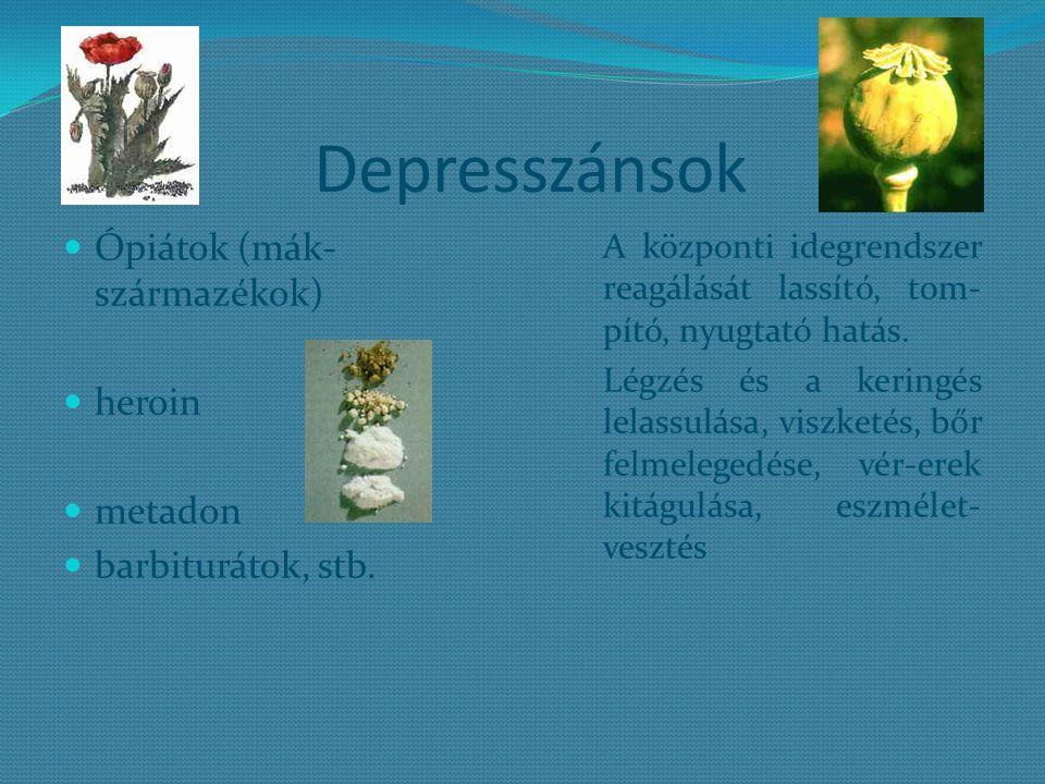 Depresszánsok Ópiátok (mák-származékok) heroin metadon