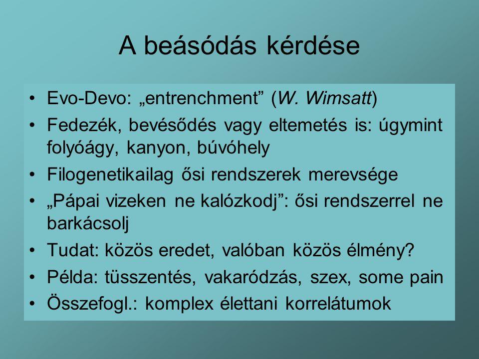 """A beásódás kérdése Evo-Devo: """"entrenchment (W. Wimsatt)"""