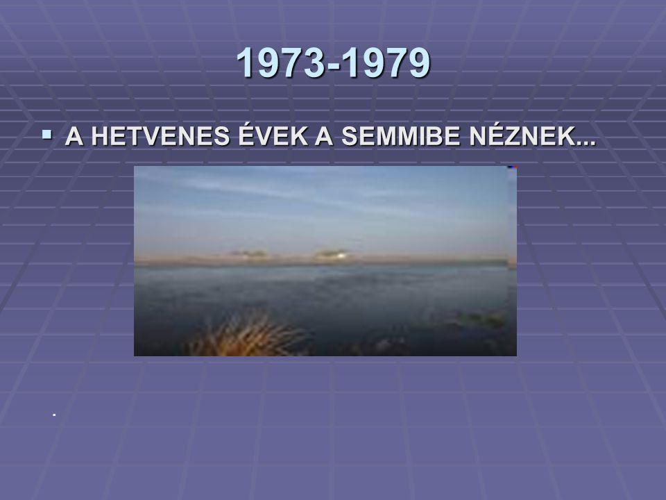 1973-1979 A HETVENES ÉVEK A SEMMIBE NÉZNEK... .