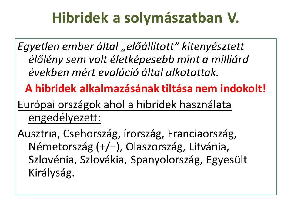Hibridek a solymászatban V.