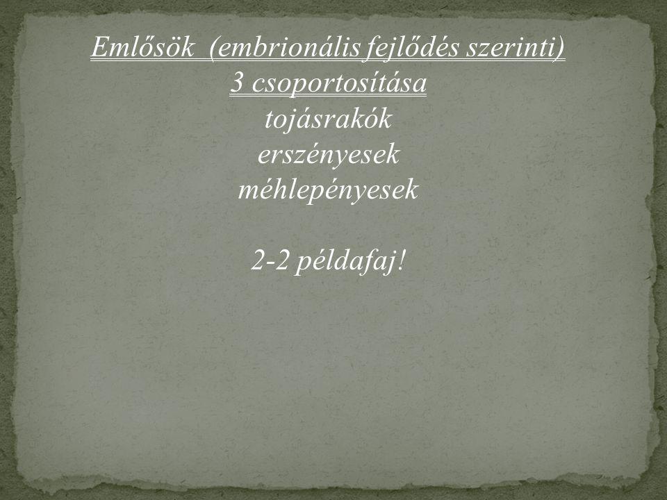 Emlősök (embrionális fejlődés szerinti)