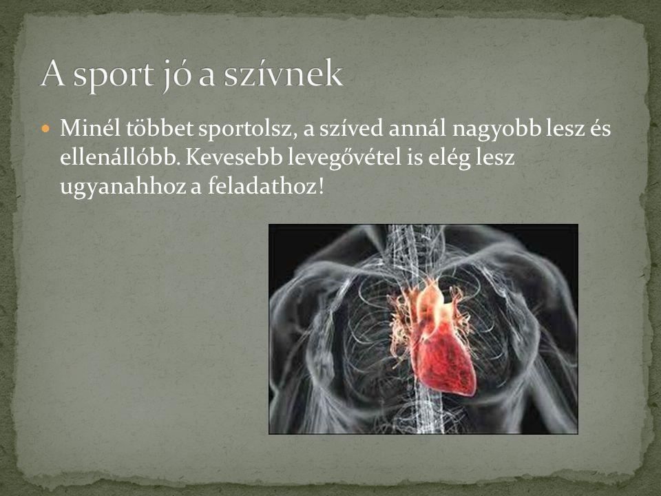 A sport jó a szívnek Minél többet sportolsz, a szíved annál nagyobb lesz és ellenállóbb.