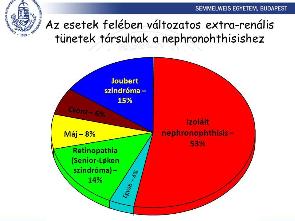 Az esetek felében változatos extra-renális tünetek társulnak a nephronohthisishez
