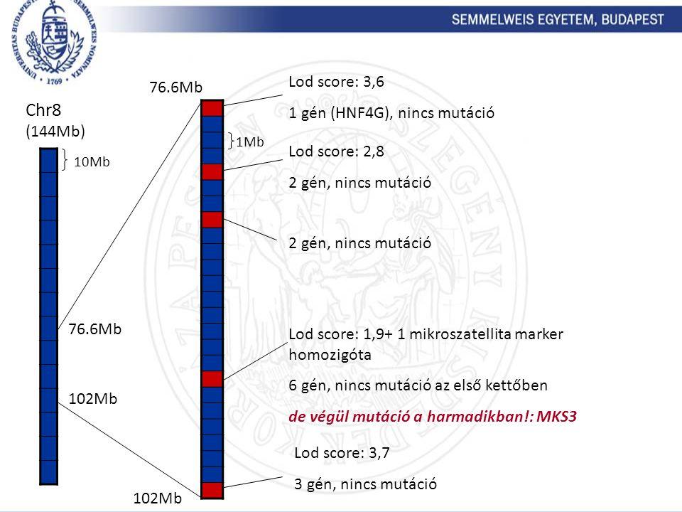 Chr8 (144Mb) Lod score: 3,6 76.6Mb 1 gén (HNF4G), nincs mutáció