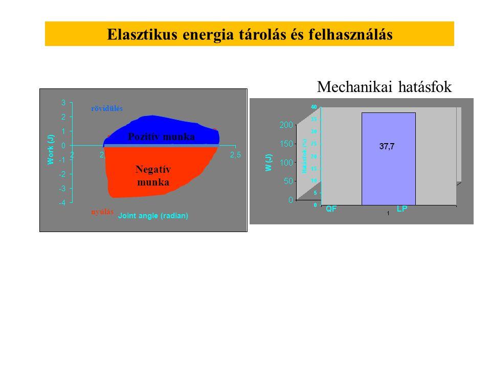 Elasztikus energia tárolás és felhasználás