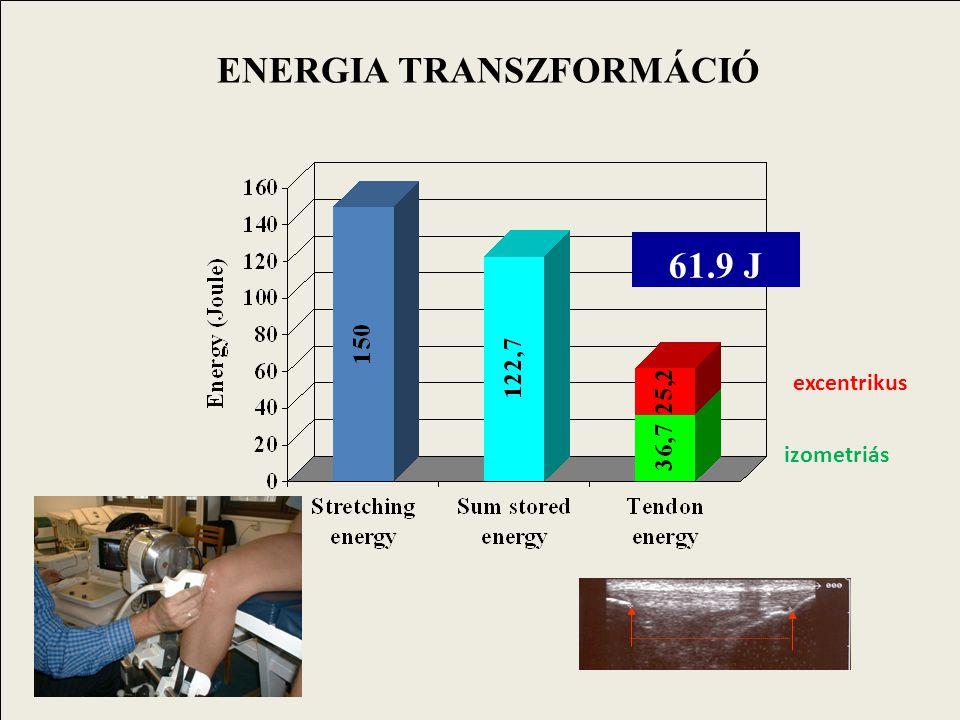 ENERGIA TRANSZFORMÁCIÓ