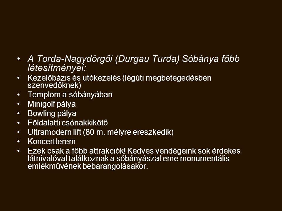 A Torda-Nagydörgői (Durgau Turda) Sóbánya főbb létesítményei: