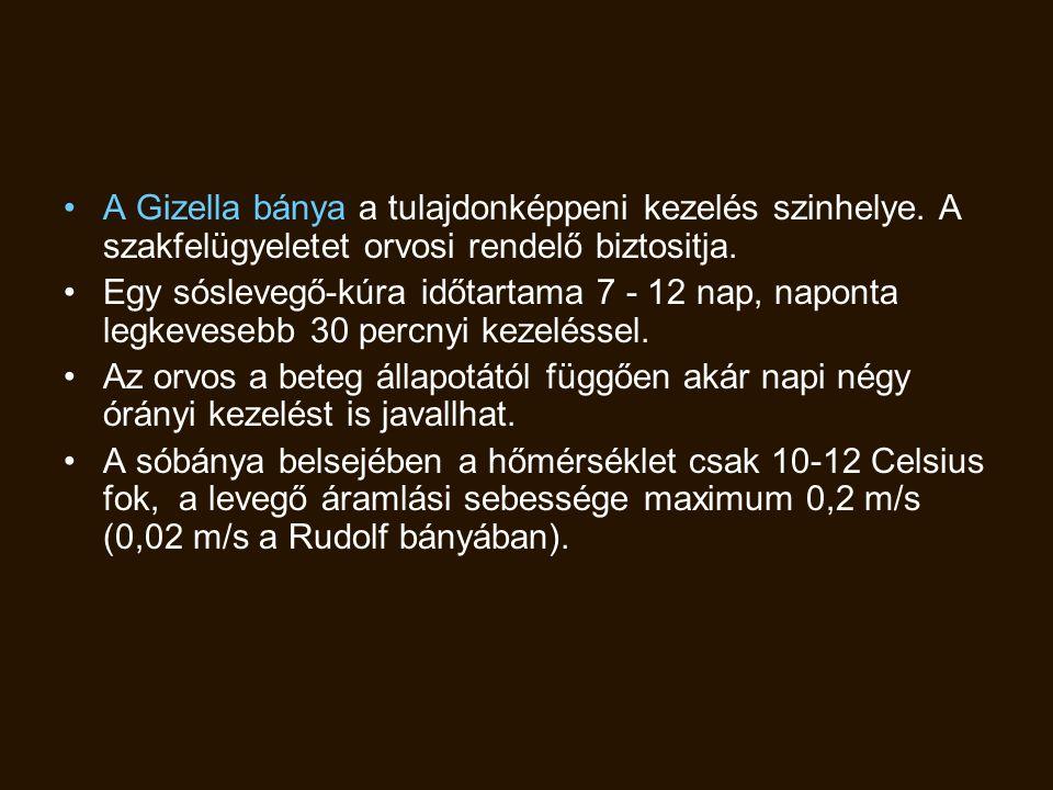 A Gizella bánya a tulajdonképpeni kezelés szinhelye