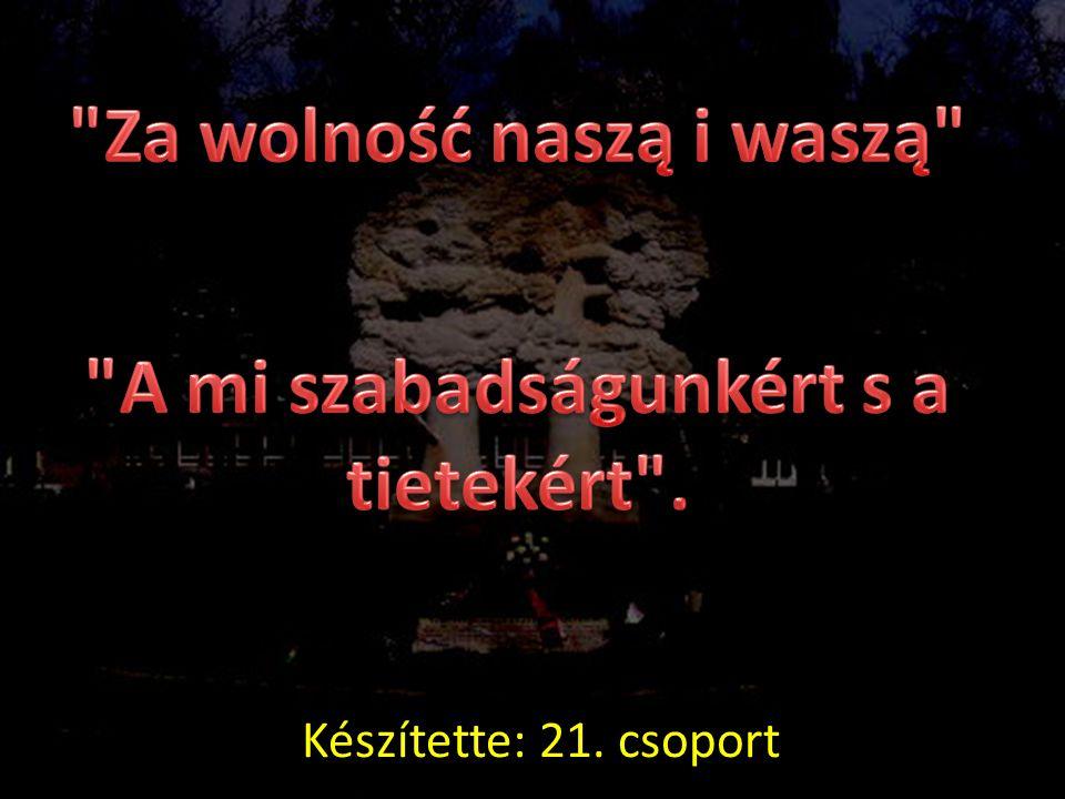 Za wolność naszą i waszą A mi szabadságunkért s a tietekért .