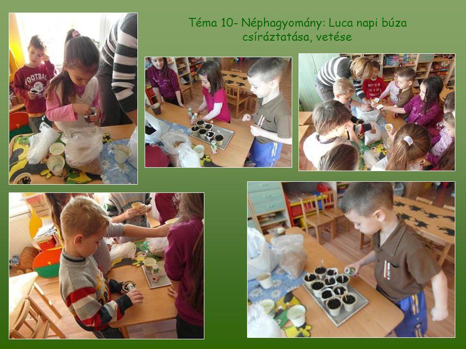 Téma 10- Néphagyomány: Luca napi búza csíráztatása, vetése