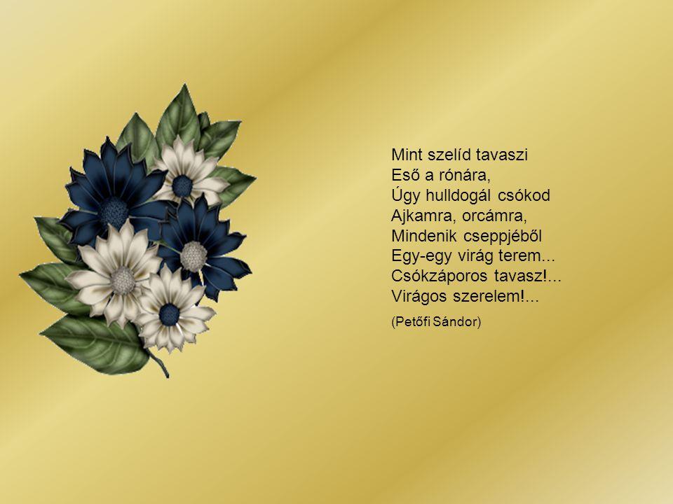 Mint szelíd tavaszi Eső a rónára, Úgy hulldogál csókod Ajkamra, orcámra, Mindenik cseppjéből Egy-egy virág terem... Csókzáporos tavasz!... Virágos szerelem!...