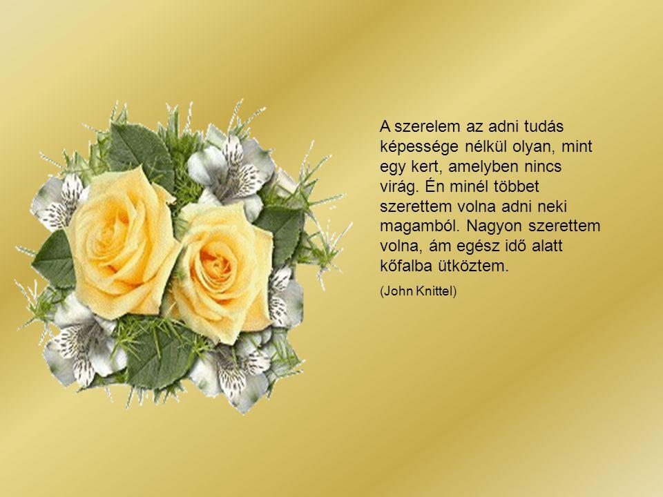 A szerelem az adni tudás képessége nélkül olyan, mint egy kert, amelyben nincs virág. Én minél többet szerettem volna adni neki magamból. Nagyon szerettem volna, ám egész idő alatt kőfalba ütköztem.