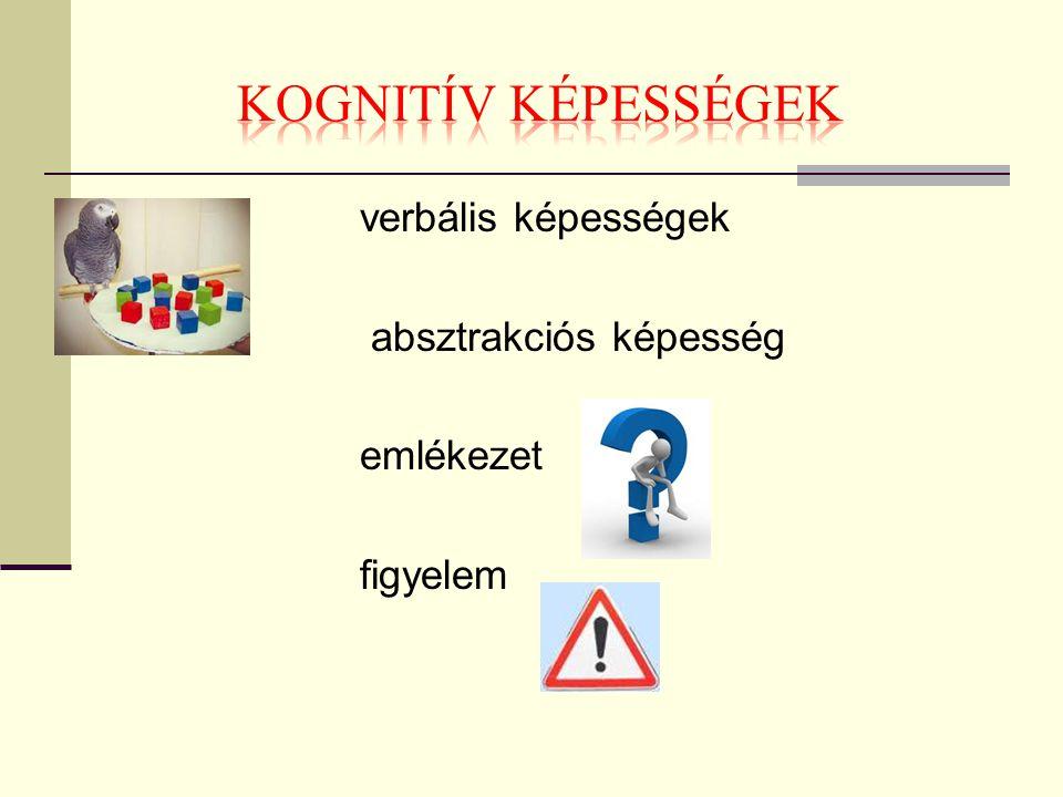 KOGNITÍV KÉPESSÉGEK verbális képességek absztrakciós képesség emlékezet figyelem