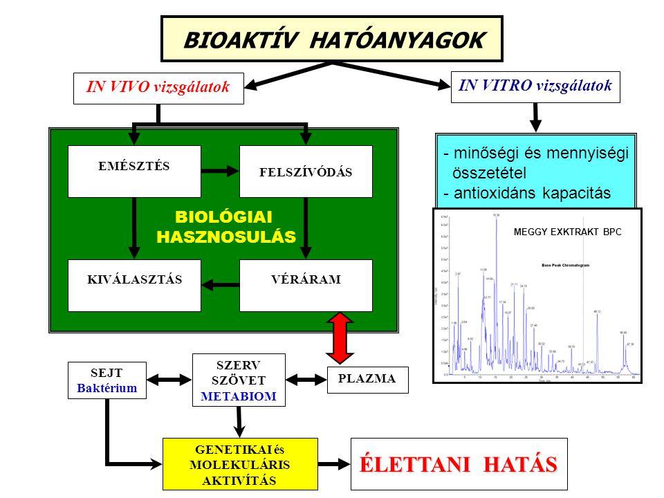 GENETIKAI és MOLEKULÁRIS AKTIVÍTÁS