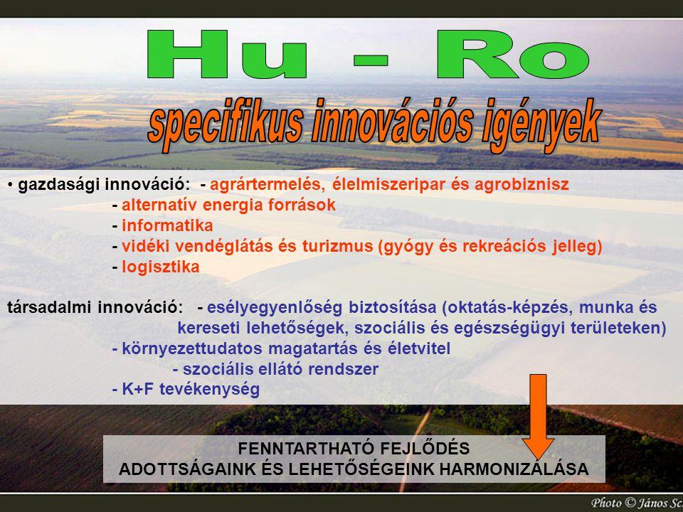 Hu - Ro specifikus innovációs igények