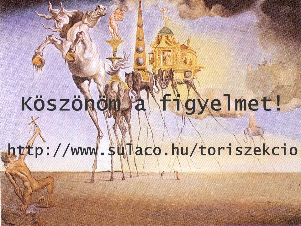 Köszönöm a figyelmet! http://www.sulaco.hu/toriszekcio