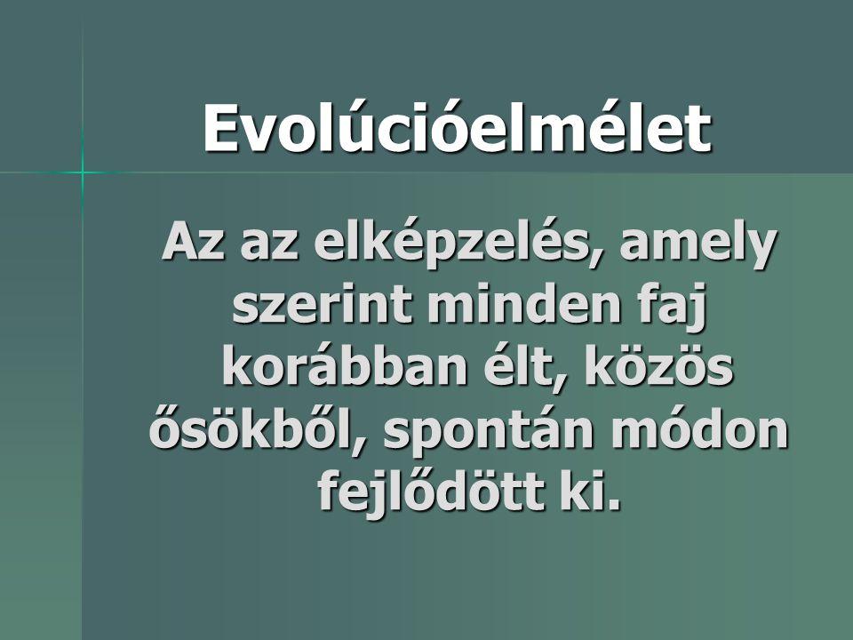 Evolúcióelmélet Az az elképzelés, amely szerint minden faj korábban élt, közös ősökből, spontán módon fejlődött ki.