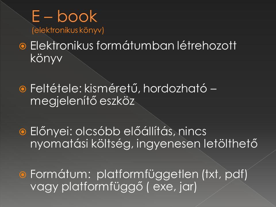 E – book (elektronikus könyv)