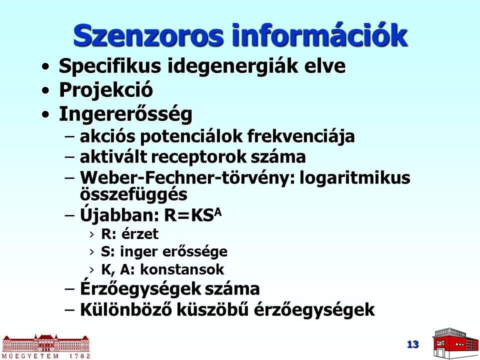 Szenzoros információk