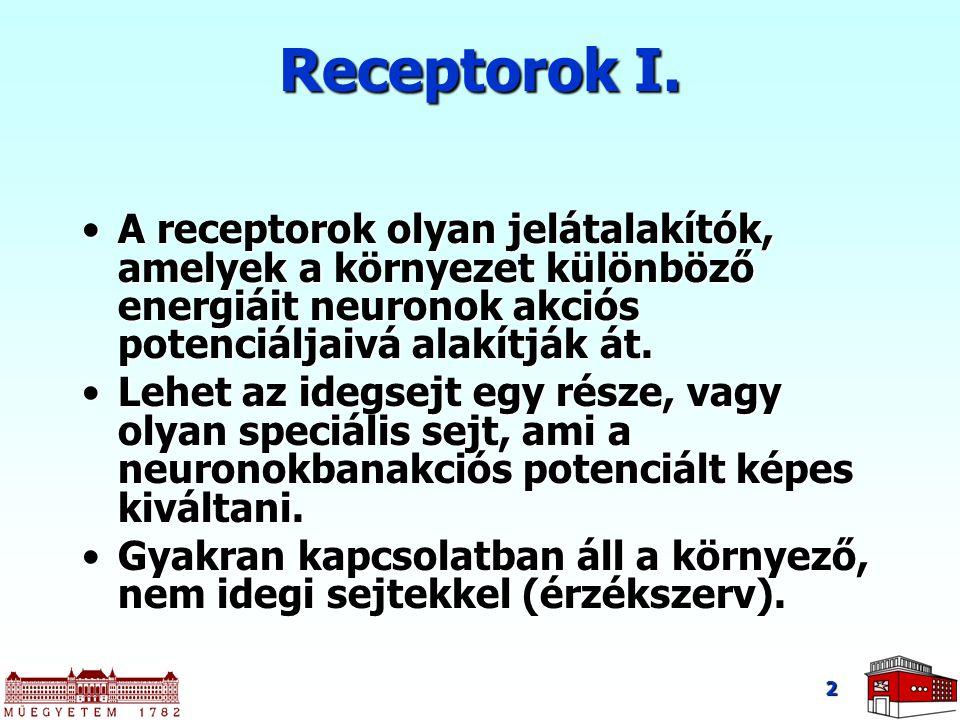 Receptorok I. A receptorok olyan jelátalakítók, amelyek a környezet különböző energiáit neuronok akciós potenciáljaivá alakítják át.