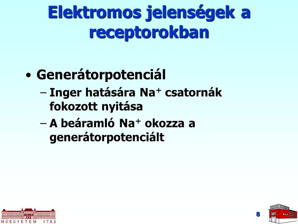 Elektromos jelenségek a receptorokban