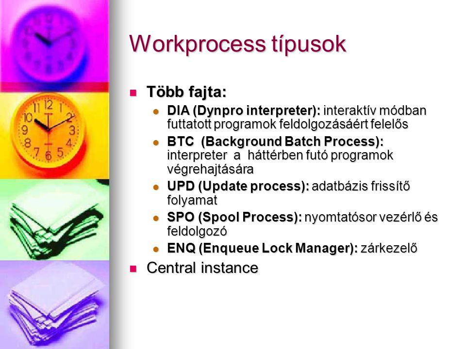 Workprocess típusok Több fajta: Central instance