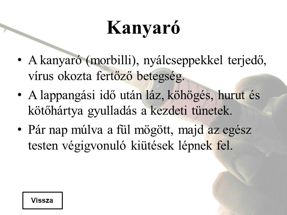 Kanyaró A kanyaró (morbilli), nyálcseppekkel terjedő, vírus okozta fertőző betegség.