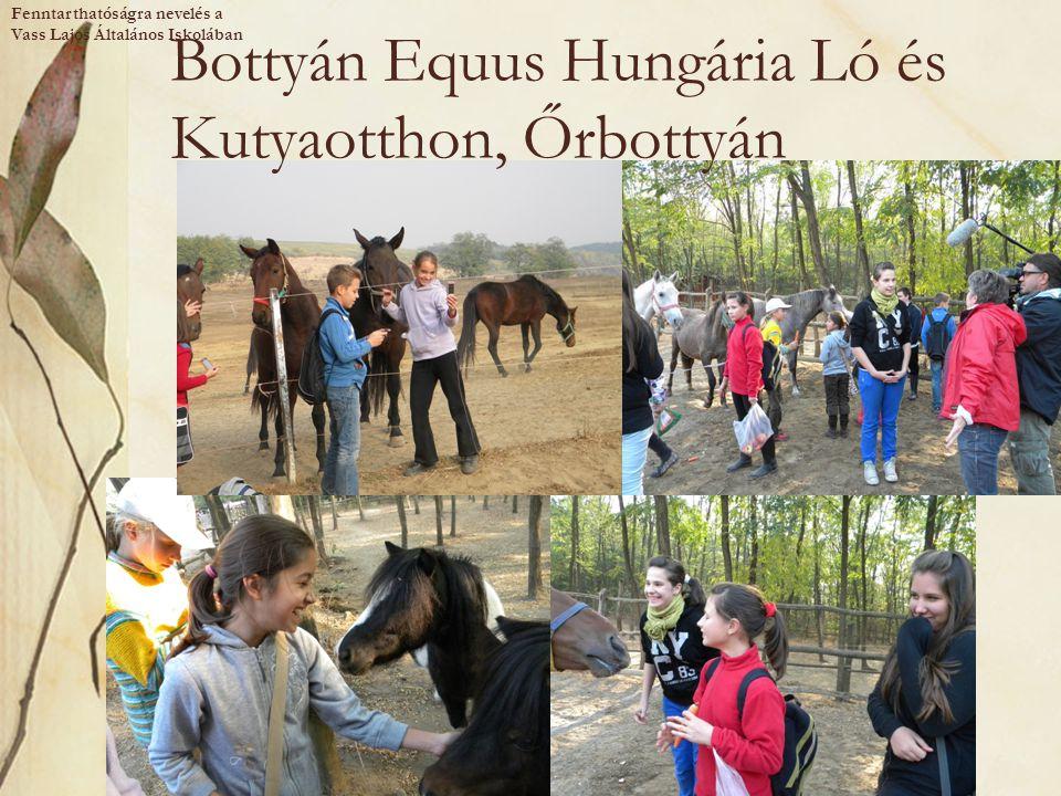 Bottyán Equus Hungária Ló és Kutyaotthon, Őrbottyán