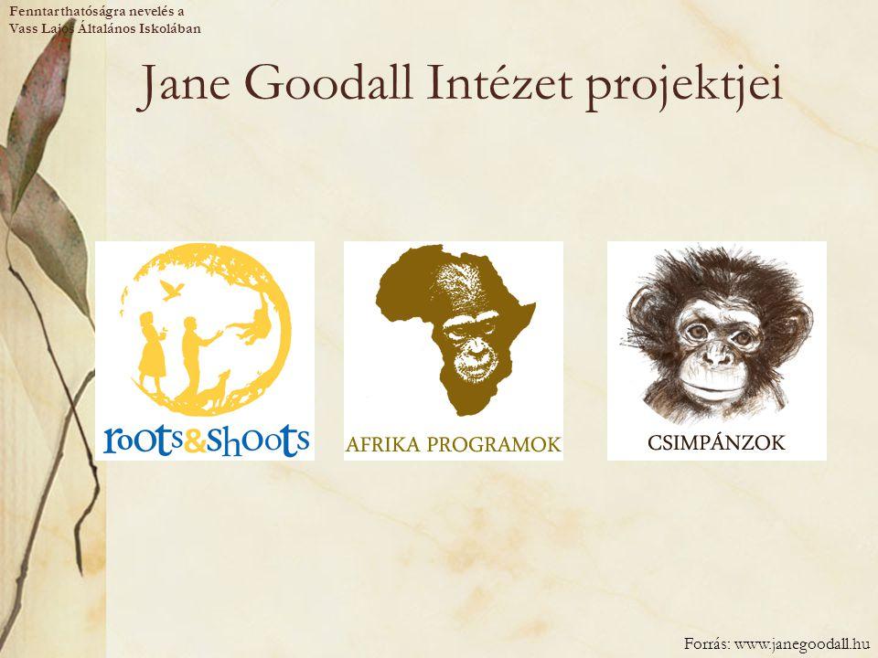 Jane Goodall Intézet projektjei